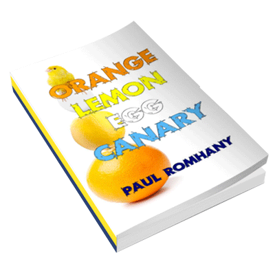 Orange, Lemon, Egg & Canary by Paul Romhany
