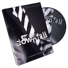 Downfall by Dan Hauss*