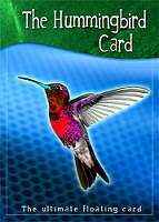 Hummingbird--Card