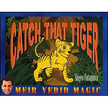 Catch-That-Tiger--Shigeo-Futagawa