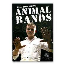 Animal Bands by Liam Montier*