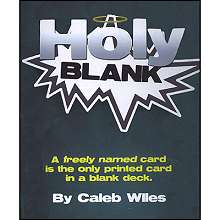 Holy Blank by Caleb Wiles