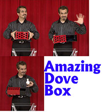 Amazing Dove Box - Tora Magic