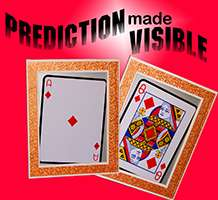 Prediction-Made-Visible