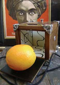 Emperors-Orange-Box--David-Powell