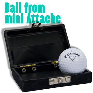 Ball from Mini Attache
