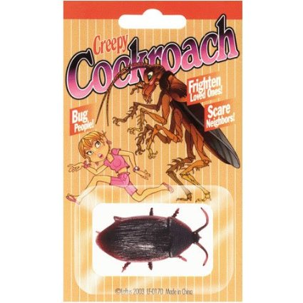 Fake Cockroach