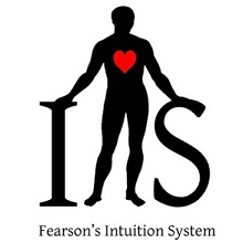Intuition System - Steve Fearson