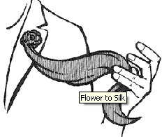 Flower To Silk - Nielsen