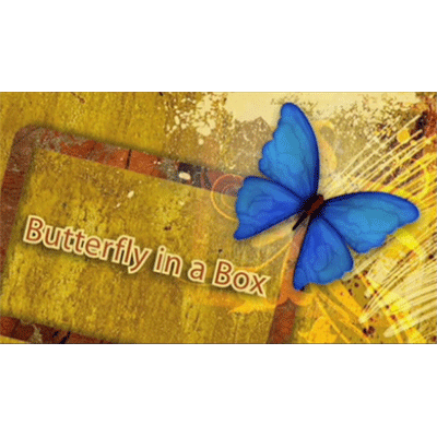 Butterfly In a Box by Mark Presley