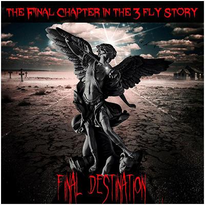 Final Destination by Matthew Wright