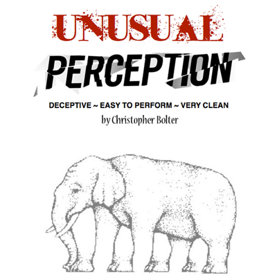 Unusual Perception by Chris Bolter*