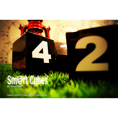 Smart-Cubes-(Large)-by-Taiwan-Ben