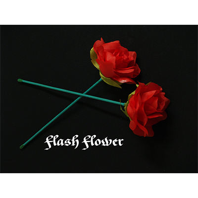 Red Flash Flower  - by GD Wu & GT magicstore
