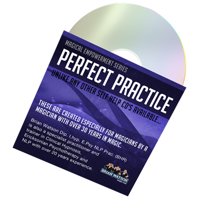 Perfect Practice (Empowerment Series) by Brian Watson*