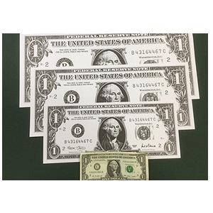 Jumbo Dollar Bill