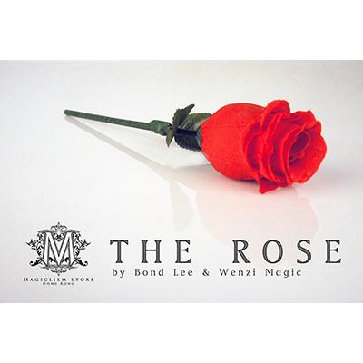 The-Rose-by-Bond-Lee-&-Wenzi-Magic