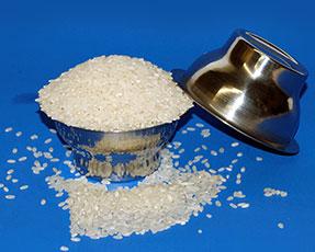 Rice Bowls - Mini