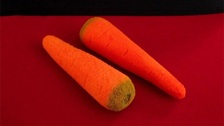 Sponge-Carrots-2-pieces-by-Alexander-May