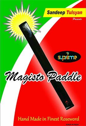 Magisto-Paddle-by-Sandeep-Tulsyan