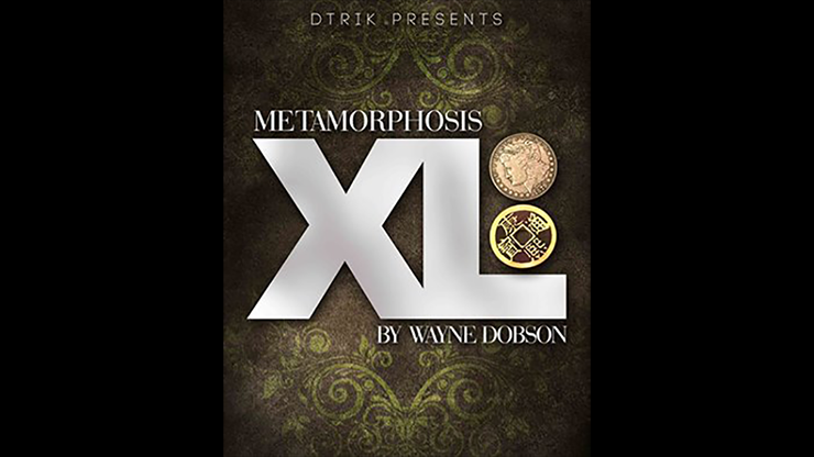 Metamorphosis XL by Wayne Dobson