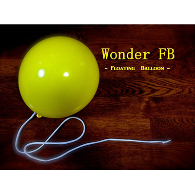 Wonder-Floating-Balloon-by-RYOTA