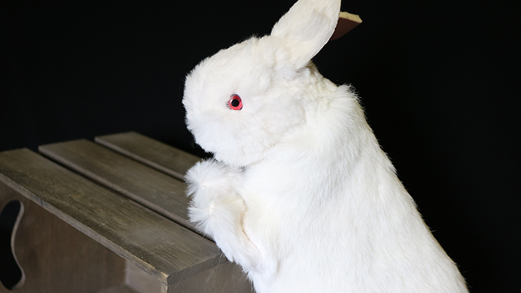 Rabbit Hand Puppet by Magic Masters