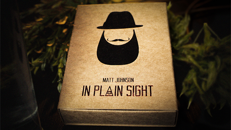 In Plain Sight by Matt Johnson*
