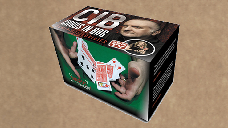 CIB:-Cards-In-Bag-by-Dominique-Duvivier