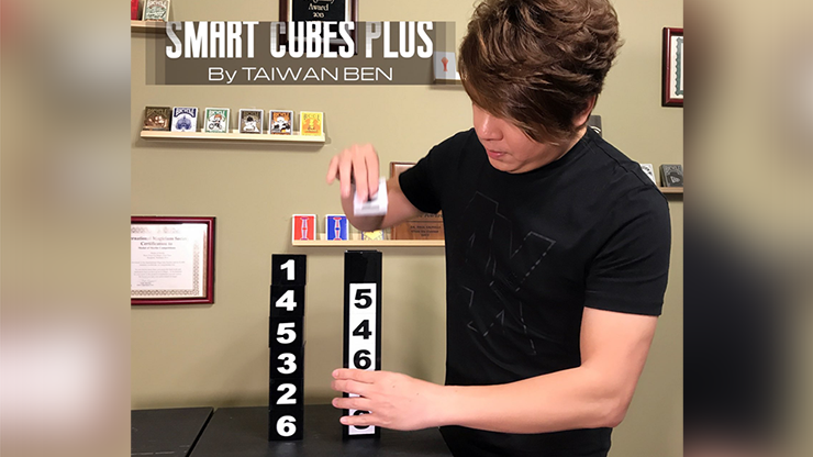 Smart Cubes PLUS (Medium / Parlor) by Taiwan Ben