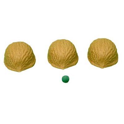 Three Shell Game With Book
